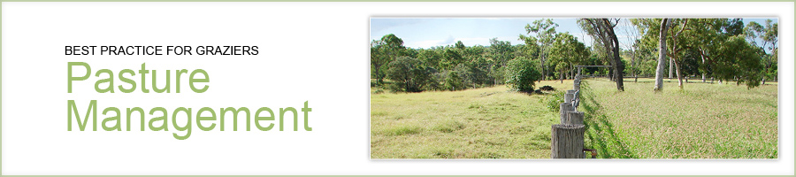 Best practice for graziers - pasture management